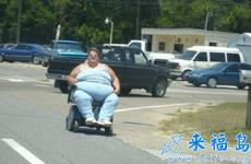 胖妞的交通工具