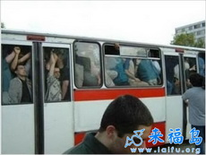 一词以概之:公交