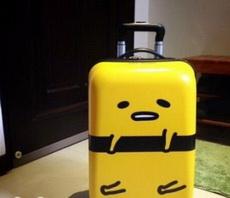 新买的行李箱,分分钟被被萌倒!