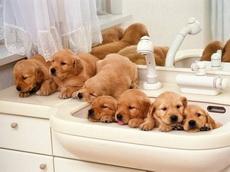 麻麻,我们准备好了洗澡了!