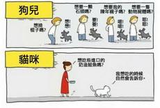 狗狗和猫猫的不同