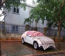 台风来了,好机智的车主!