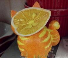 一只橙子喵
