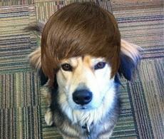 主银,这个发型帅帅哒