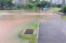 那不是下水道