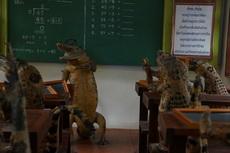安静安静,开始上课了。