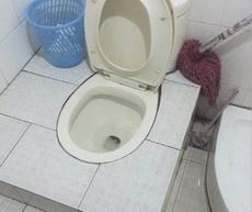 世界上怎么会有如此完美的厕所