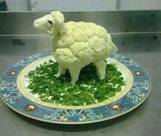 一顿饭一头羊,你说怎么舍得下口啊
