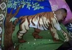 虎子的后半生