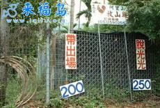 目前台湾最新的叫鸡行情
