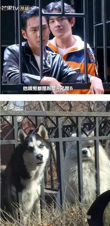 黄圣依7日将发新歌 广东错峰负荷超1000万千瓦