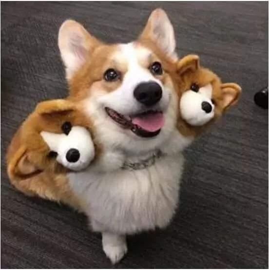可怕的地獄三頭犬
