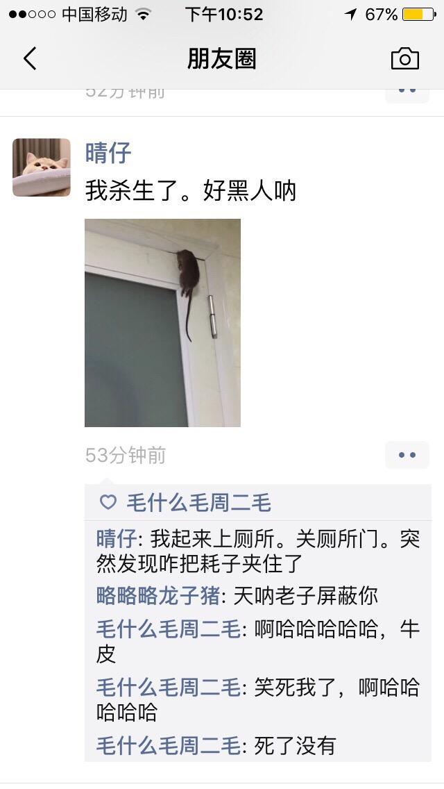 """""""钻石公主""""号9名中国乘客确诊 驻日使馆提供帮助"""